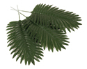 Palm Leaves (Pack of 12) - VBS 2017