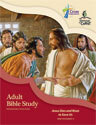 Adult Bible Study (NT4) - Downloadable