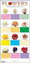 Contemporary Flower Chart