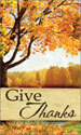 Harvest Banner: Give Thanks