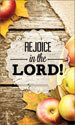 Harvest Banner: Rejoice Fruit