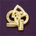 Pin - Zone Past President Gold Tone