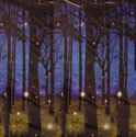 Firefly Forest Backdrop, 4' x 30' - VBS 2019